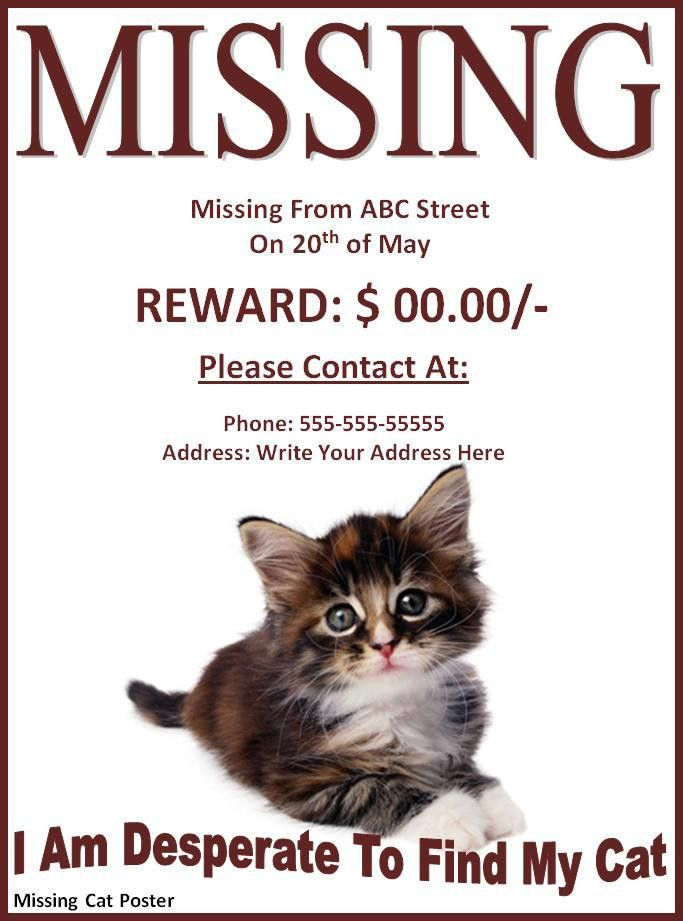 Missing Pet Poster Template | Free Printable Word Templates,