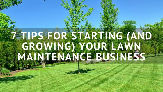 7 Tips for Starting (and Growing) Your Lawn Maintenance Business