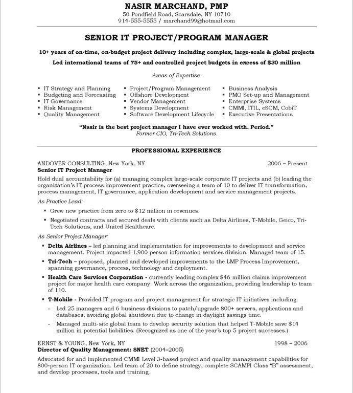 Clever Design Manager Resume 7 IT Project Manager - Resume Example