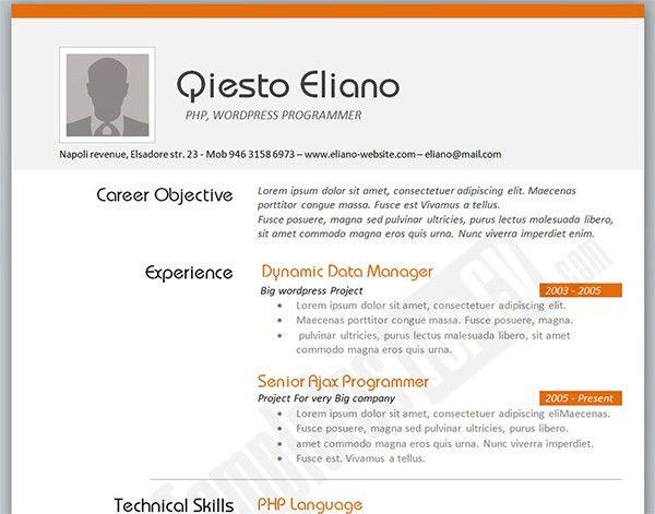php programmer resume httpwwwresumecareerinfophp. programmer ...