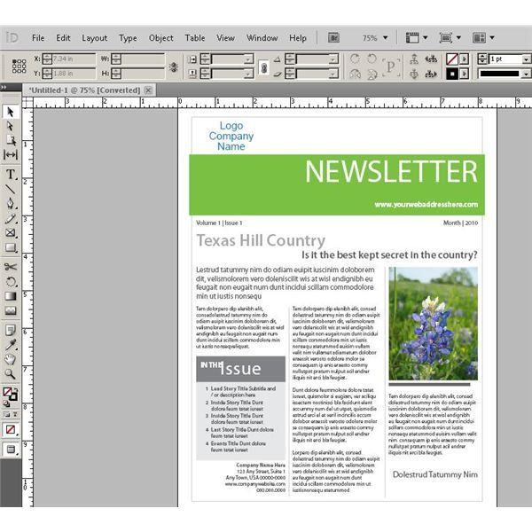 Learn About Designing Web Pages in InDesign: Should You Consider ...