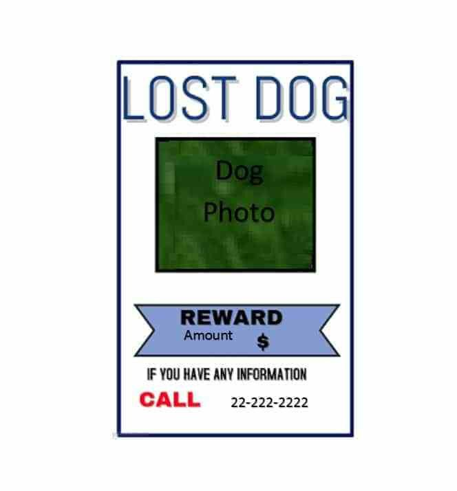 Lost Dog Sign Template. irl troll posters know your meme. what to ...