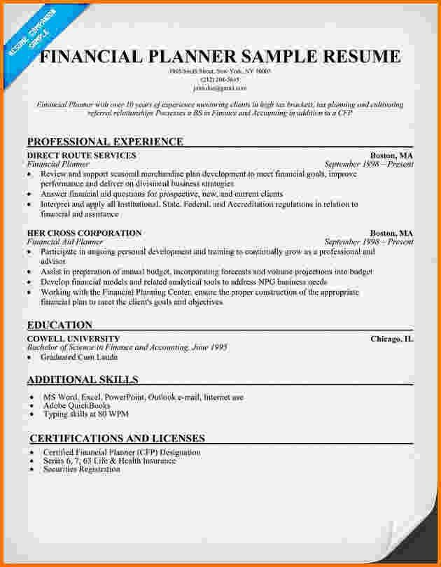 9+ financial resume sample | Financial Statement Form