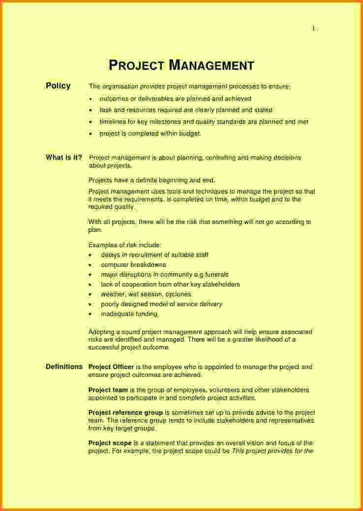 8+ project scope statement examples | Letter Template Word