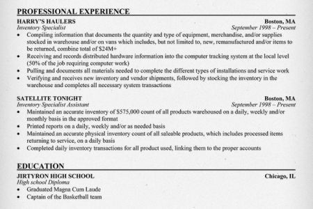 Sample resume for inventory auditor