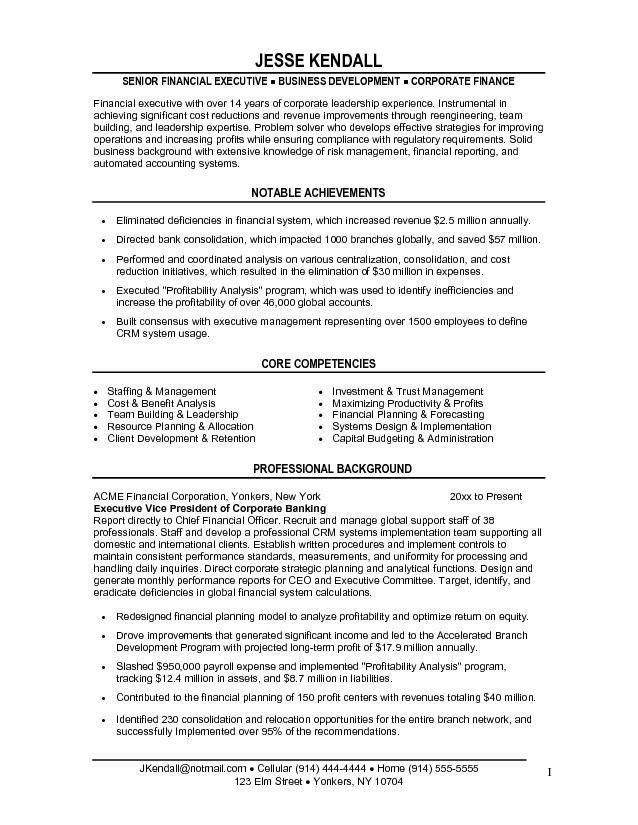 Free Financial Vice President (VP) Resume Example
