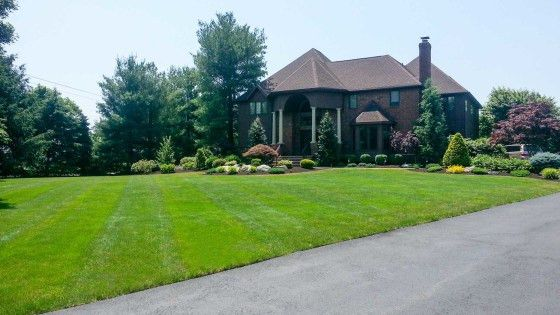 Country Lawn Care, Inc. | Professional Landscape Management ...