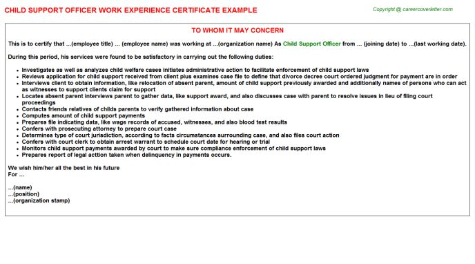 Child Support Officer Work Experience Certificate