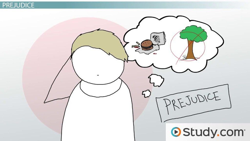 Prejudice, Discrimination & Stereotypes: Definitions & Examples ...