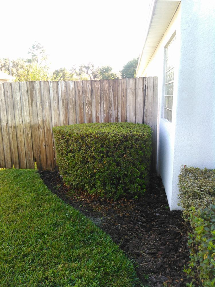 Orlando lawn service in Casselberry, FL - Your Neighborhood Lawn ...