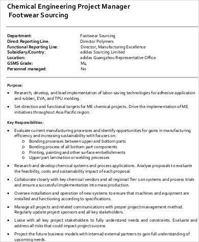 Project Director Job Description. Job Description Job Title: Pa ...