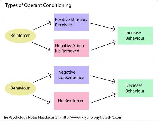 Educational Psychology Notes - What is Operant Conditioning?