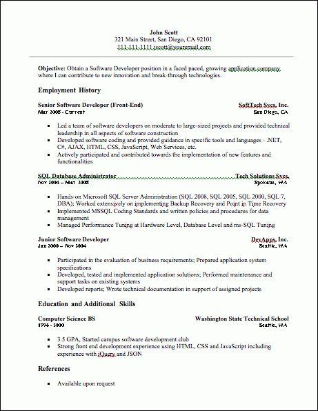 Developer Resume, Developer Resume Sample