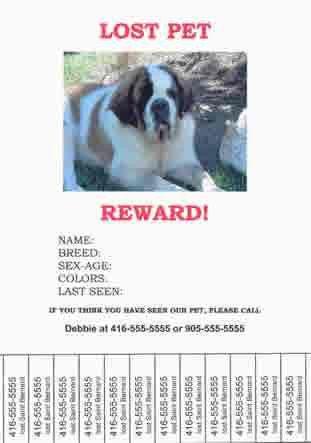 Effingham Humane Society - Lost Pets