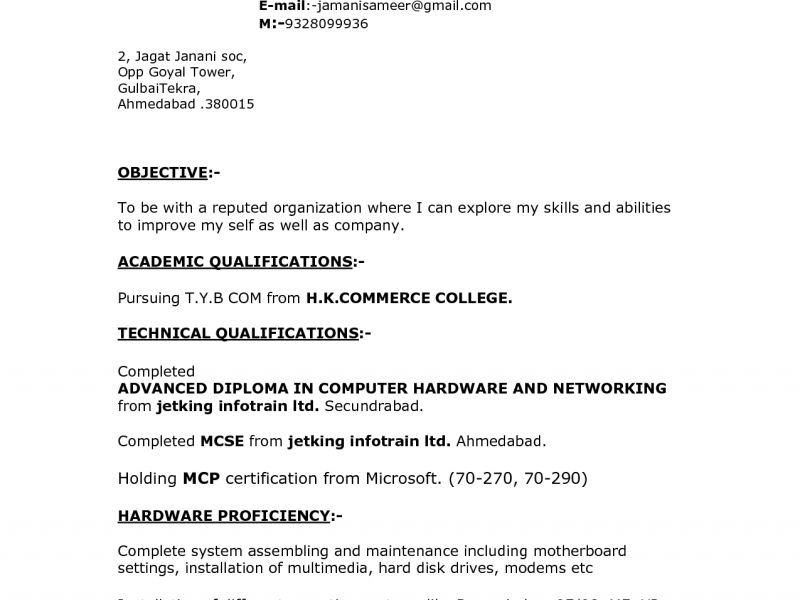 Mcse Fresher Resume Sample. the 25 best best resume format ideas ...