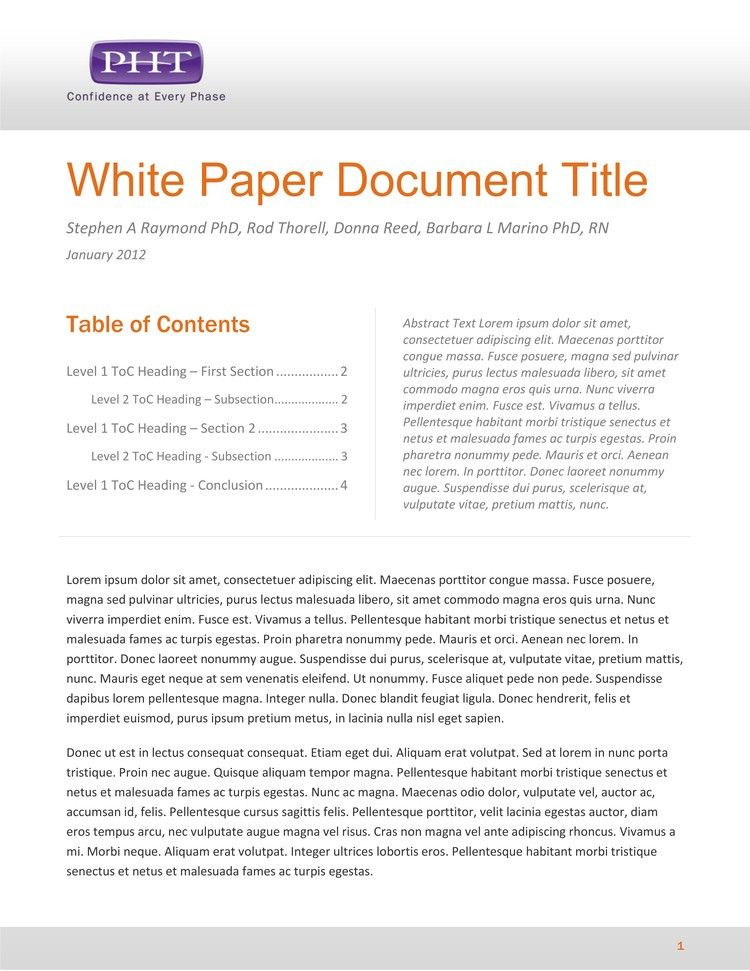 Professional White Paper Template Example : Template Sample
