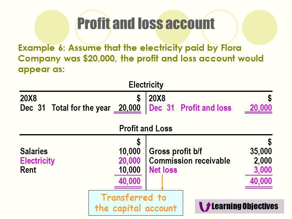 The Trading and Profit and Loss Account and the Balance Sheet ...