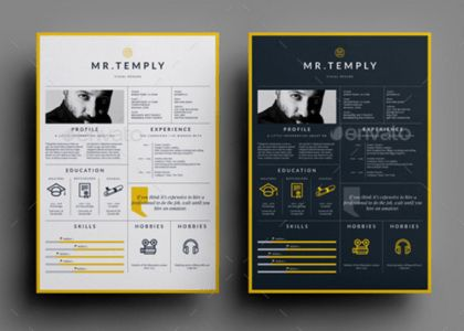 Visual Resume Templates - Resume Example