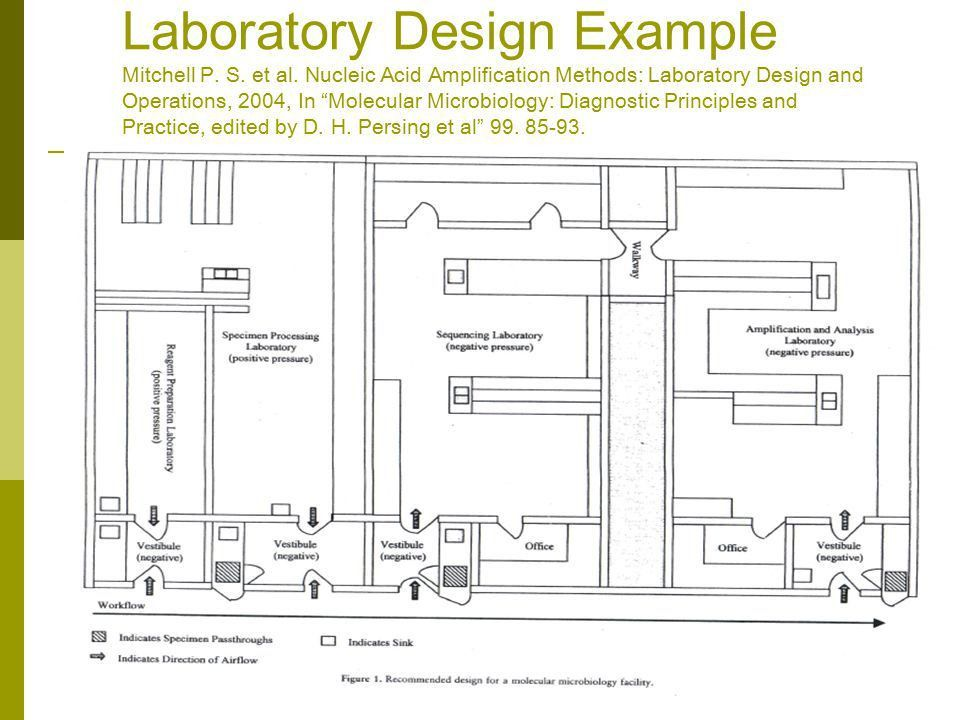 Molecular Laboratory Design - ppt video online download