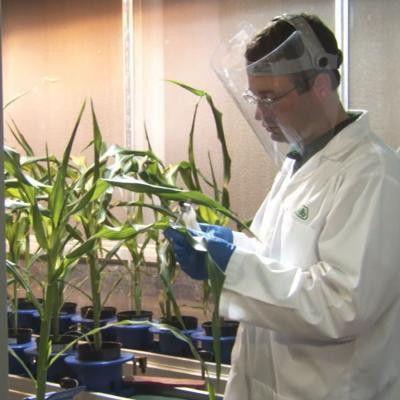 Plant Biologist   agexplorer.com