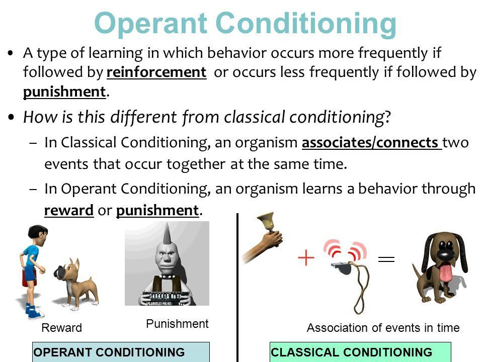 Operant Conditioning A type of learning in which behavior occurs ...