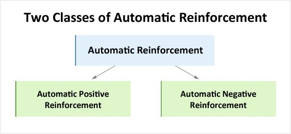 Automatic Reinforcement - Educate Autism