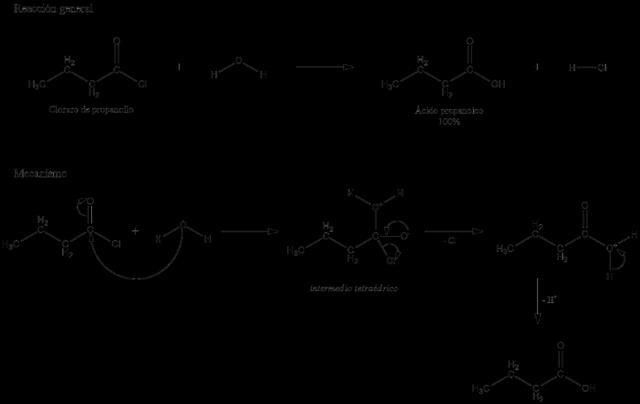 What is Hydrolysis? Examples (of Salts, Acids, Bases, Organic C ...