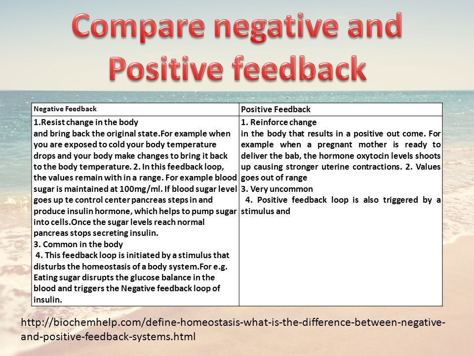 Homeostasis and feedback The Human Body - ppt video online download