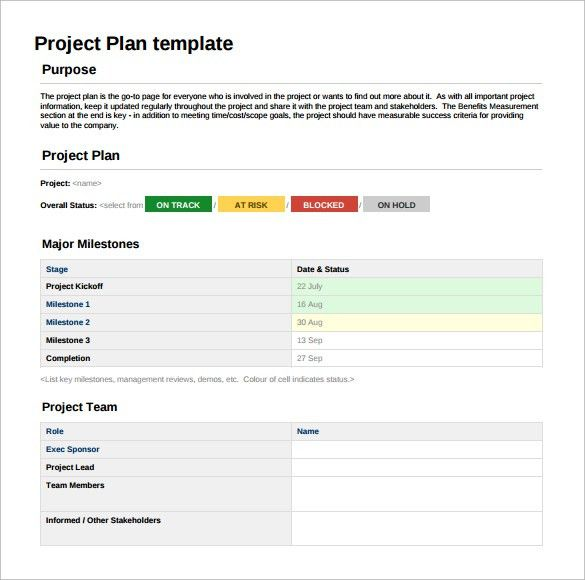 Project Sheet Template - 5+ Download Free Documents in PDF