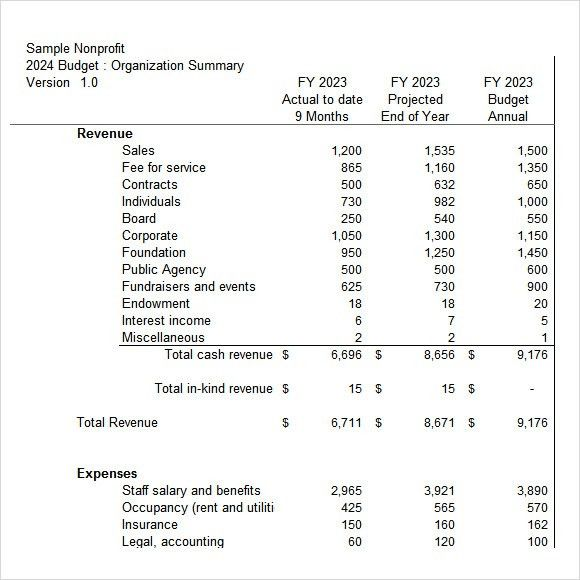 Sample Non Profit Budget Template   6+ Free Document Download In .