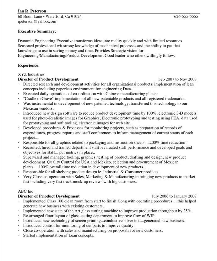 Chief Technology Officer | Free Resume Samples | Blue Sky Resumes