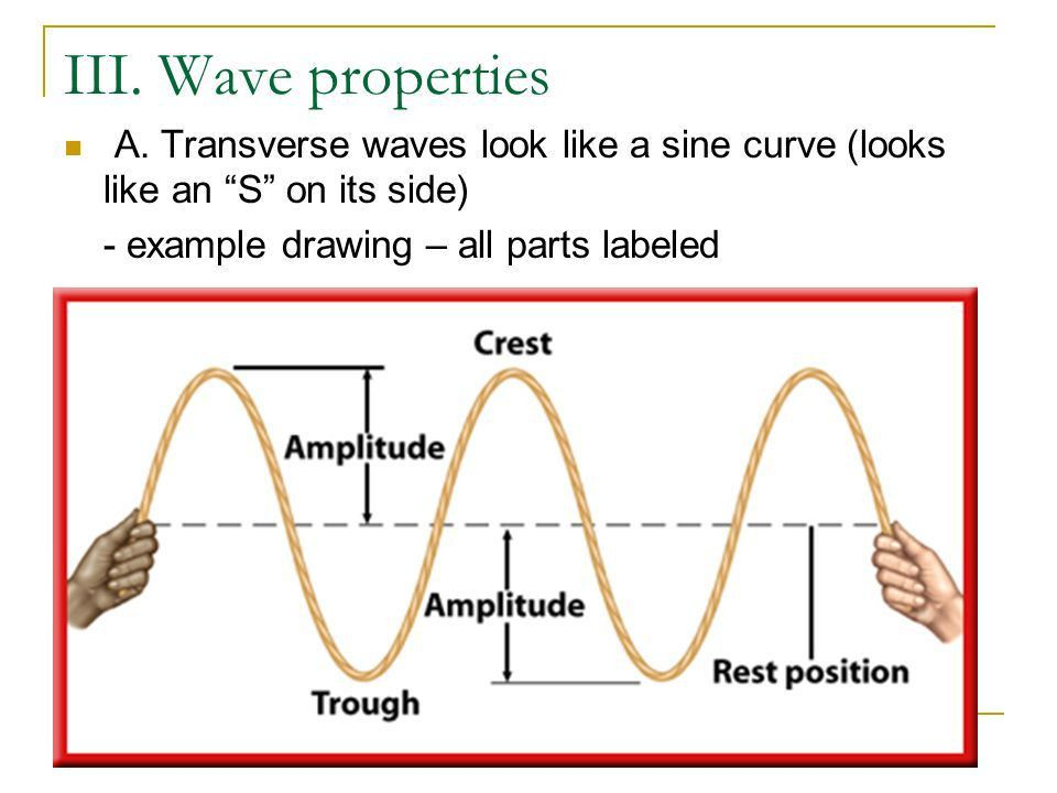 What is a Wave? Chapter 12 Section 3 Glencoe Pages ppt download