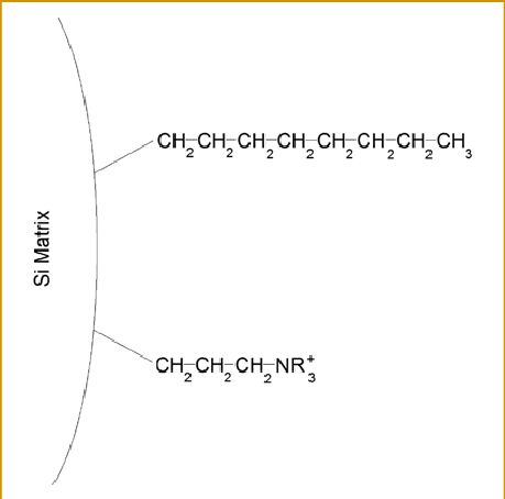 Example schematic of a mixed mode phase with hydrophobic C8 ...