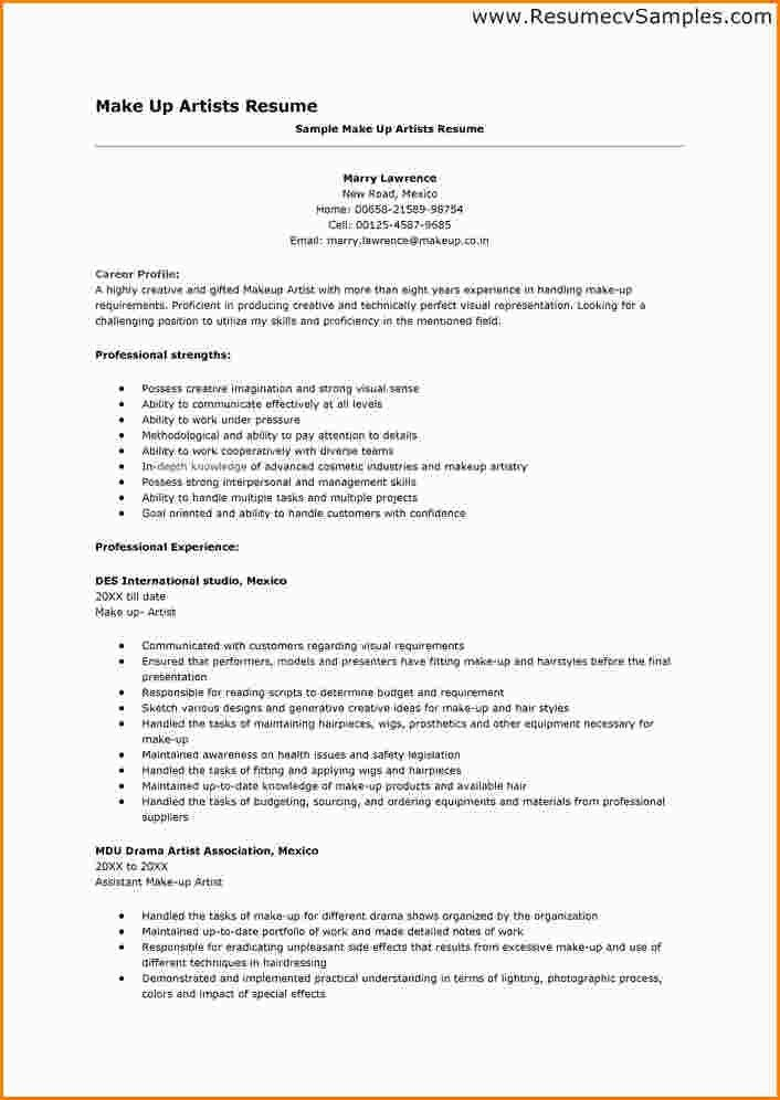job qualifications enchanting profile summary for resume examples ...