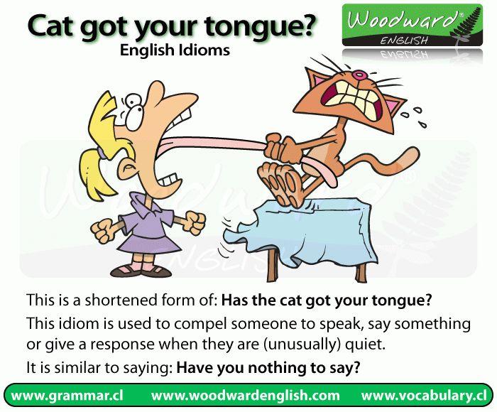 Cat got your tongue? | Woodward English