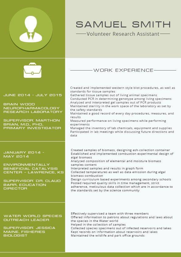 Great Functional Resume Format 2016 2017 Resume 2016 Sample Resume ...