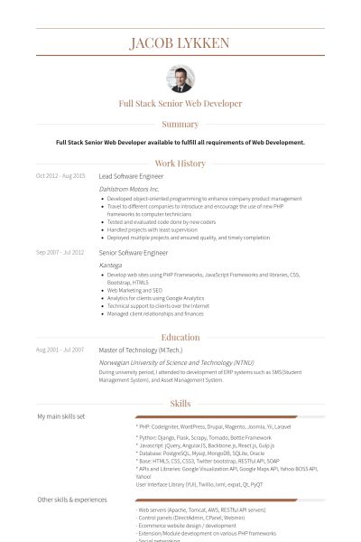 senior software engineer resume samples
