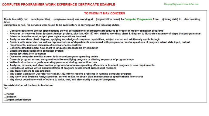 Computer Programmer Work Experience Letters