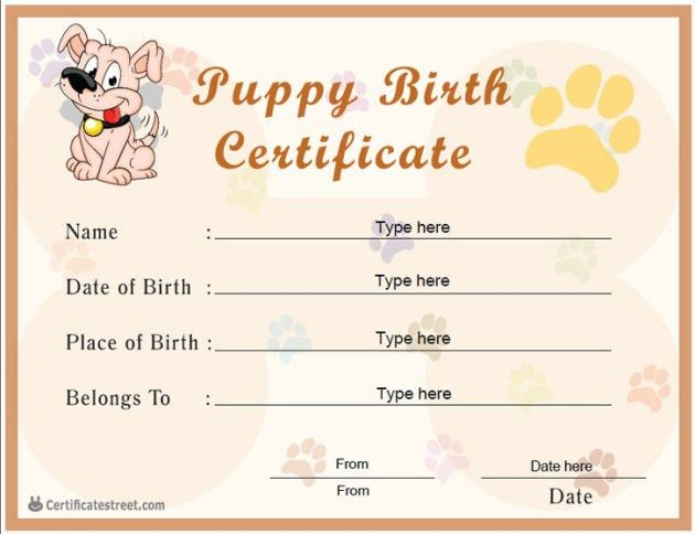 Nice Blank Baby Birth Certificate Template Sample : Helloalive
