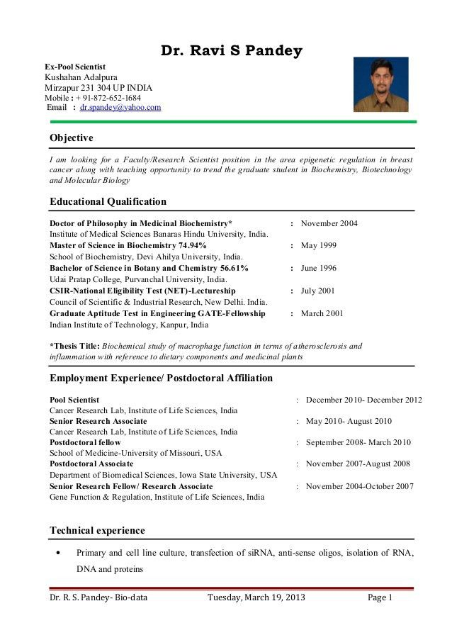 Professor Resume - uxhandy.com