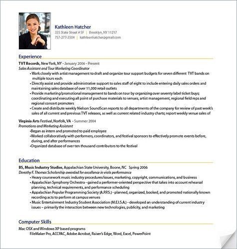 example of a professional cv write my resume for me sample ...