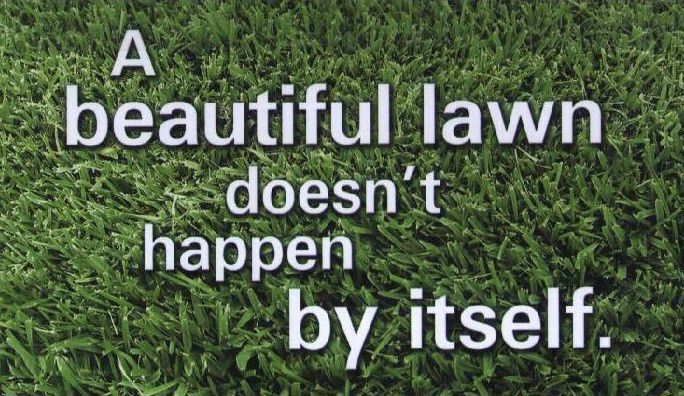 Quality Lawn Care / Lakeland, Winter Haven FL.