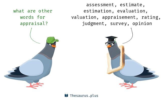 More 500 Appraisal Synonyms. Similar words for appraisal.
