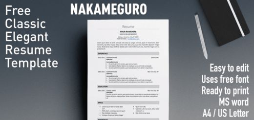 Free Formal Resume Templates | Rezumeet.com
