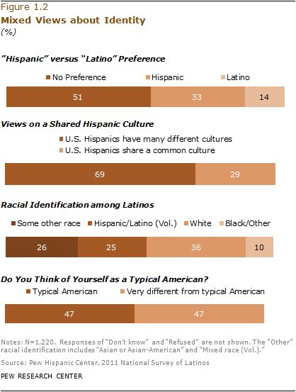 II. Identity, Pan-Ethnicity and Race | Pew Research Center