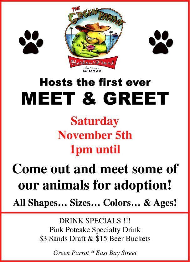 thebahamasweekly.com - Bahamas Humane Society presents Foster Dogs ...