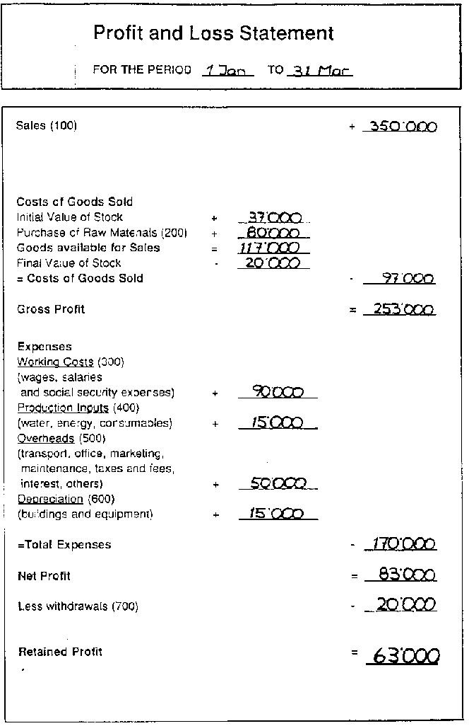 An example of a profit and loss statement