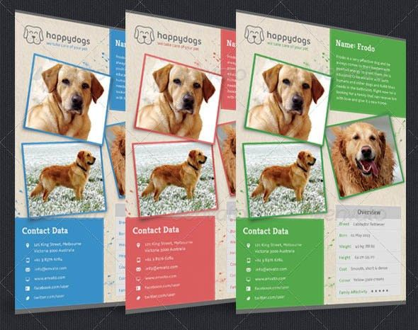 10 Cool Flyer Templates For Pet – Design Freebies