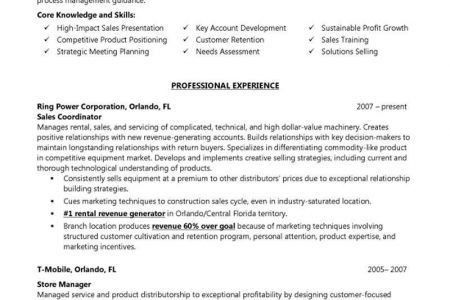 resume builder examples resumes sample cv professional profile ...