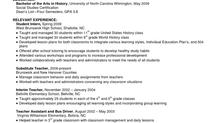 resume overview examples